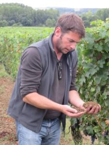 Nicolas Grosbois in de wijngaard