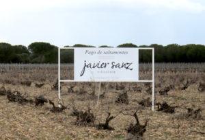 Oude wijngaarden Javier Sanz